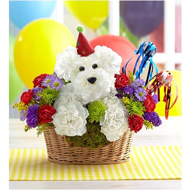 another-year-rover-flower-dog-in-a-basket-for -birthday-gift